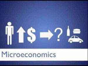 Teori Ekonomi Mikro dan Contoh dalam Kehidupan Nyata